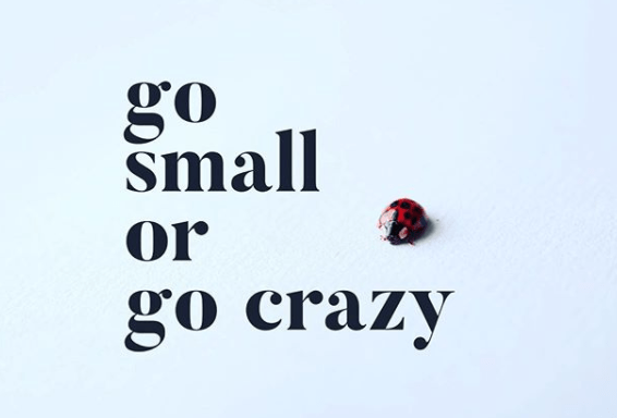"""It's time to """"go small"""" (or go crazy)"""